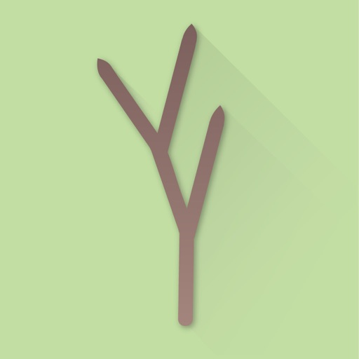 The Branch App icon