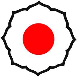Rapid Judo