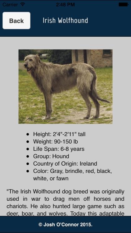 Dog Breeds 101
