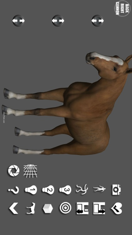 Horse Pose Tool screenshot-0