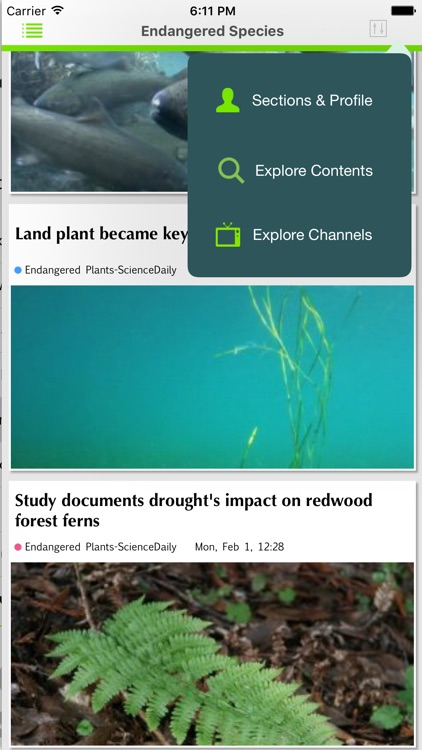 Green Channel screenshot-3