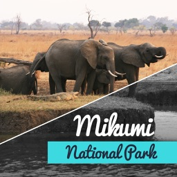 Mikumi National Park Tourism Guide