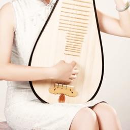 琵琶自学教程Pro