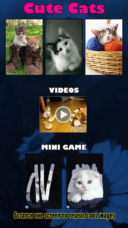 A Cat Game for Kids - Playing cool best Hidden Pics game - Not a Dogs game but an app for Cat Lover