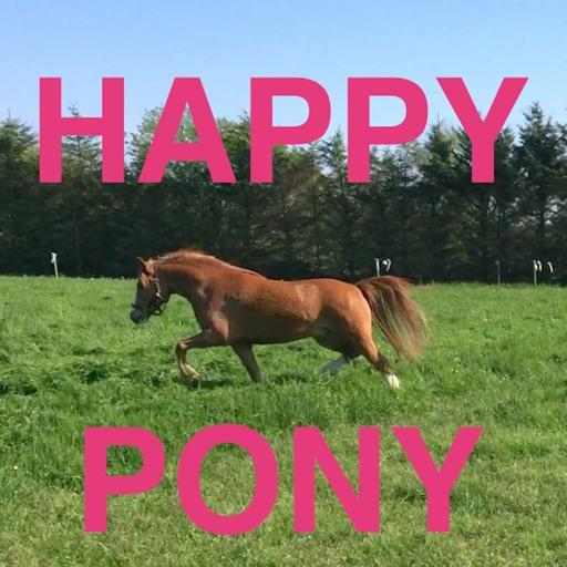 Happy Pony by Horse Reader icon