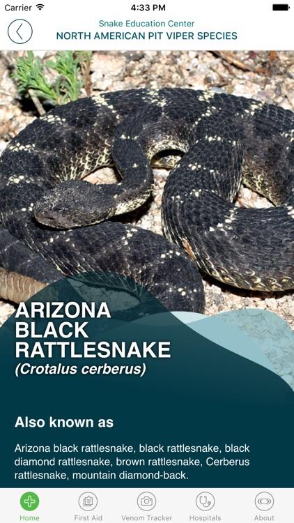 SnakeBite911