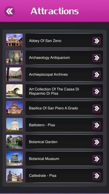 Pisa Tourism Guide screenshot-2