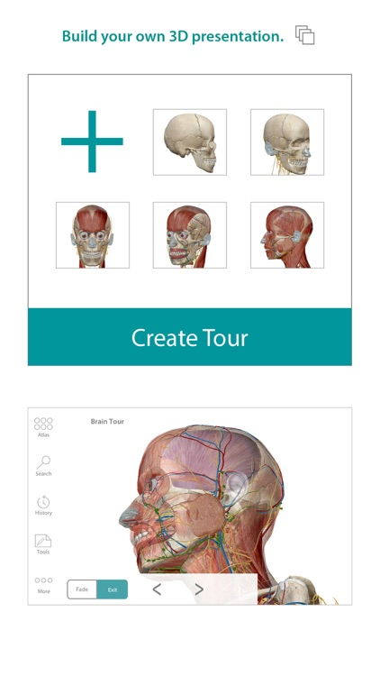 Human Anatomy Atlas – 3D Anatomical Model of the Human Body screenshot-2