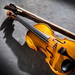 小提琴自学教程Pro