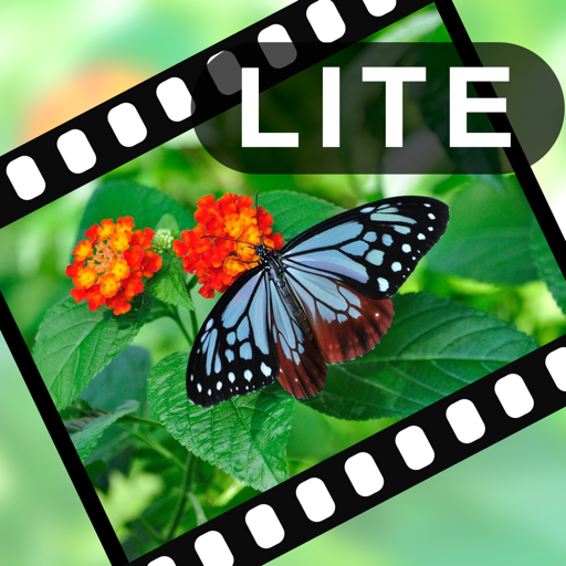 "VIdeoStiller Lite - Pull out special ""moments"" from your video!"