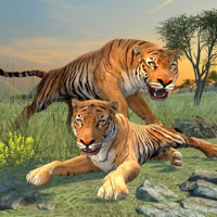 Codes for Clan of Tigers Hack