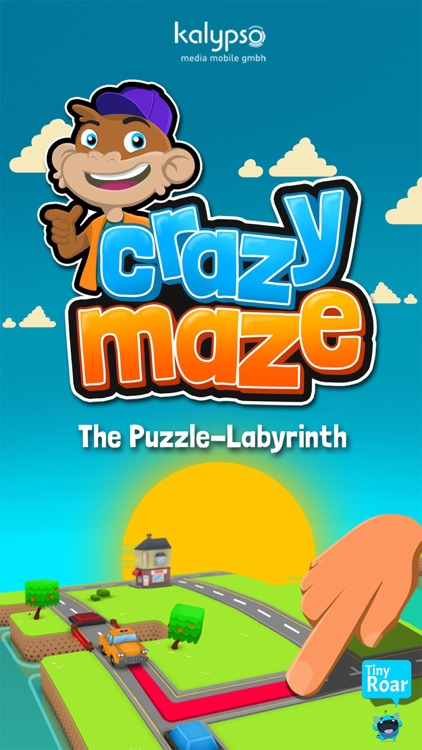 Crazy Maze - Traffic Puzzle screenshot-0