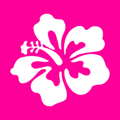Hawaiian Words & Phrases! Hawaii Dictionary and Casual Language Translation Guide