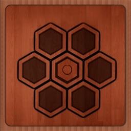 Hexagon Puzzle - Resolve The Hardest Problem