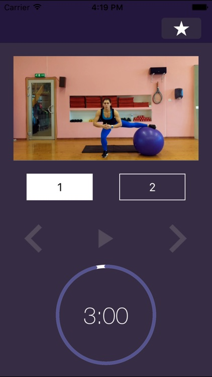 Stability Ball Exercises – Swiss Exercise Program for Strength and Physically Strong Gym Body