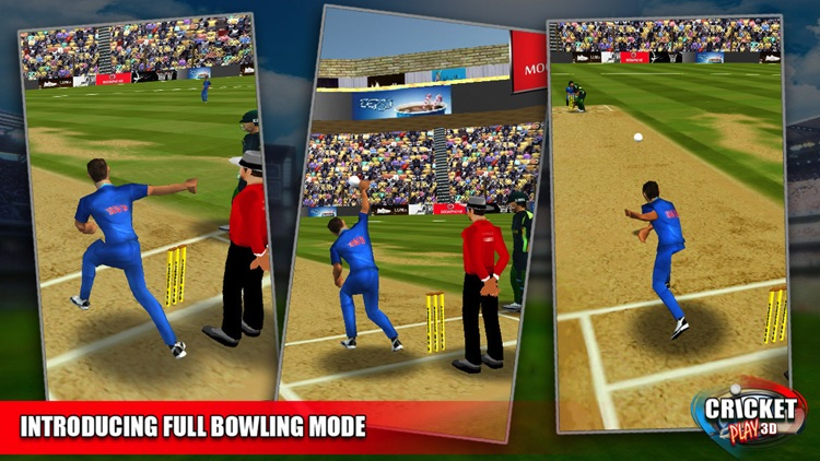 Cricket Play 3D - Live The Game (World Pro Team Challenge Cup 2016) screenshot-3