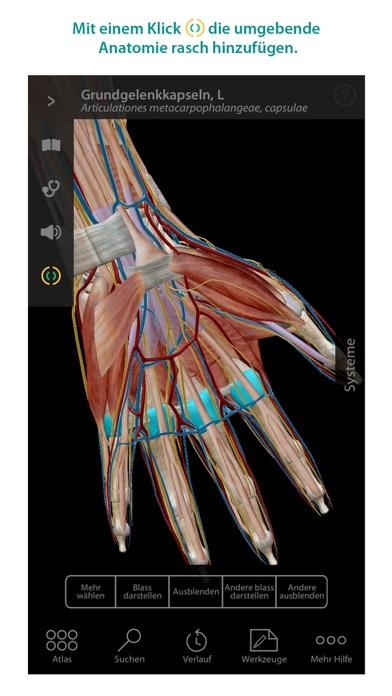 Screenshot for Atlas der menschlichen Anatomie in Germany App Store