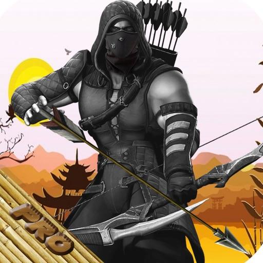 Ninja Arrow Pro