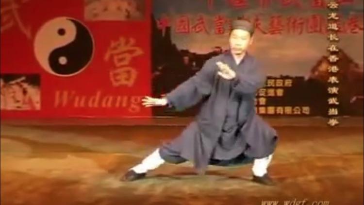 Teach Yourself Tai Chi screenshot-3
