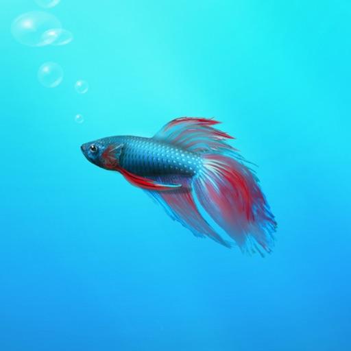 Aquarium Builder: My Pet Fish Tank Maker