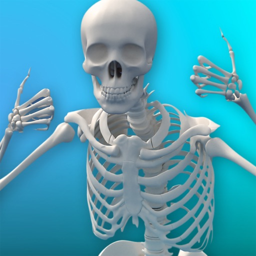 Discover MWorld Build Your Own Skeleton icon