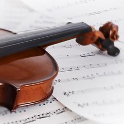 小提琴零基础入门