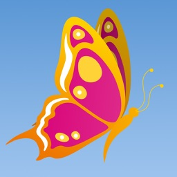 Fly Butterfly: Tap-to-Bounce Arcade Game