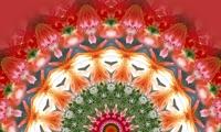 Mandala Meditations
