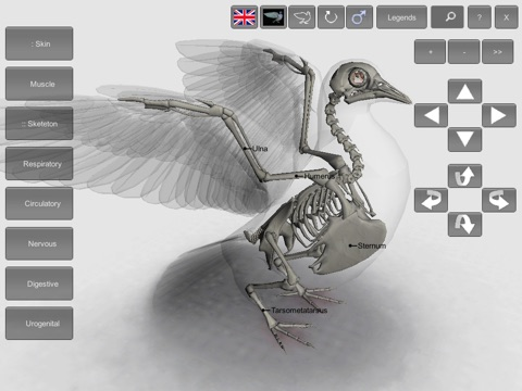 3D Bird Anatomy | App Price Drops