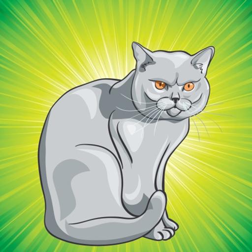 Disegni Da Colorare Gatti E Mici Libro Da Colorare Giochi Per