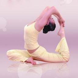 从零开始练瑜伽基础教程 - 在家练瑜伽全集