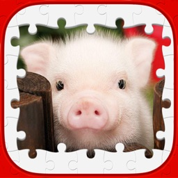 Animal Puzzle Game – Match Piece.s Of Kitten.s Panda & Cute Dogs Jigsaw From The Best Gallery