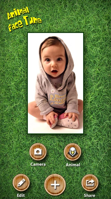 Animal Face Tune - Sticker Photo Editor to Blend, Morph and Transform Yr Skin with Wild Animal Textures Screenshot