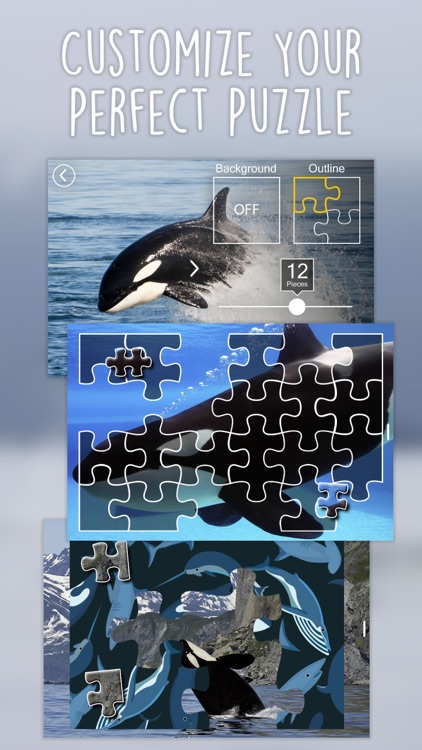 Orca Puzzles for Kids Free Jigsaw Wonder Edition