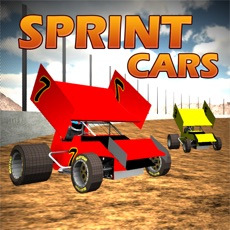 Activities of Sprint Car Dirt Track Game
