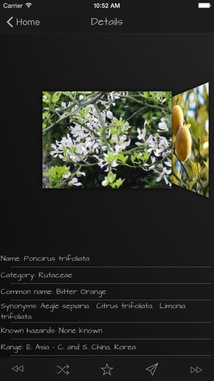 Medicinal Herbs Guide screenshot-4