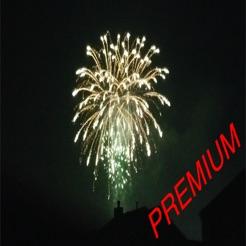 Celebration Excuses Premium