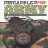 Codes for PINEAPPLE.ARMY Hack