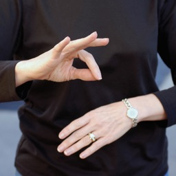 Sign Language Guide - American Sign Language Learning Signs