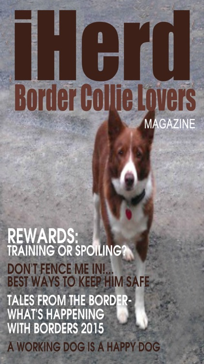 iHerd: Border Collie Lovers Magazine screenshot-4