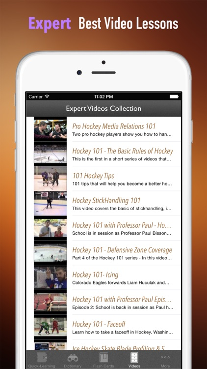Ice Hockey 101: Quick Study Reference with Video Lessons and Glossary screenshot-4