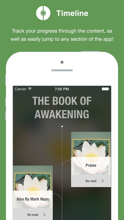 The Book of Awakening