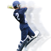 Zappasoft Pty Ltd - Cricket Coach Plus artwork