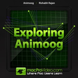 Course For Animoog