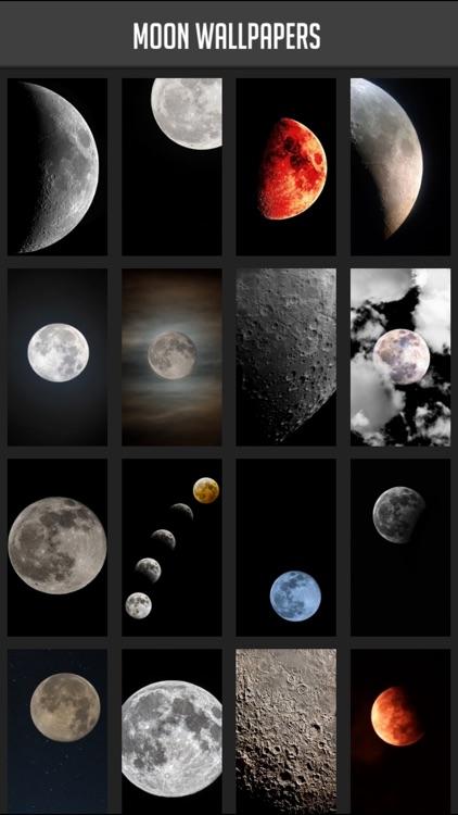 Moon Wallpaper