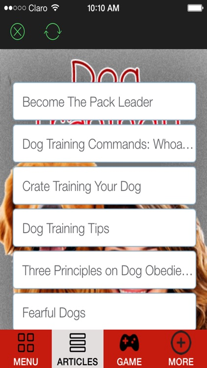 'A How to Train a Puppy and Stop Dog Barking With Great training classes and Amazing Tips screenshot-2