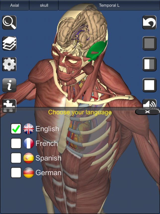 3D Bones and Organs (Anatomy) on the App Store