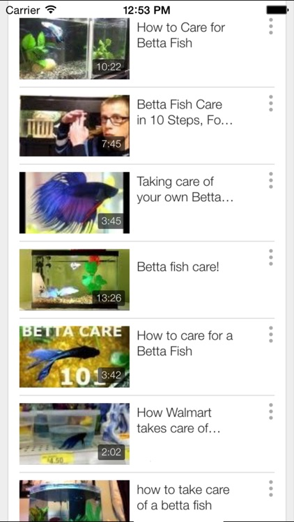 Betta Fish - Everything You Want to Know About Betta Fish screenshot-4