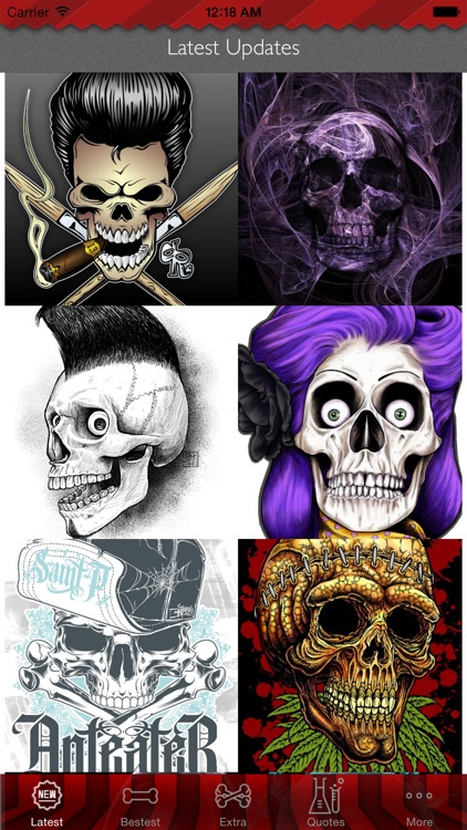 Skull Art Theme HD Wallpaper and Best Inspirational Quotes Backgrounds Creator