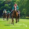 Carrera de caballos en el mundo